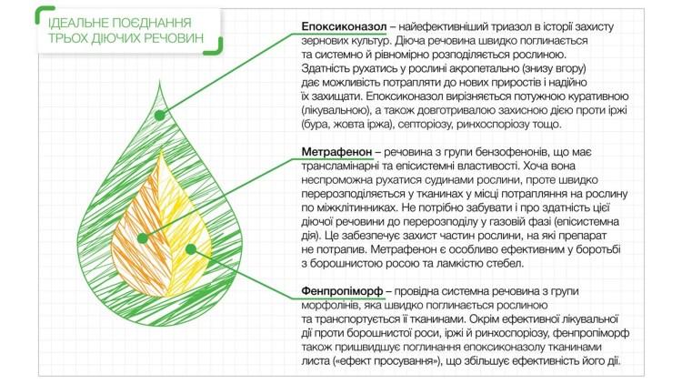 Slide-7-2_750x422.jpg